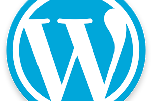 WordPress APK 300x300