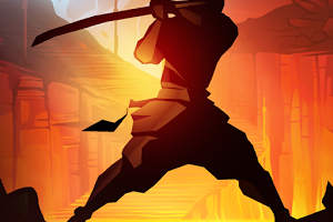Shadow Fight APK 300x300